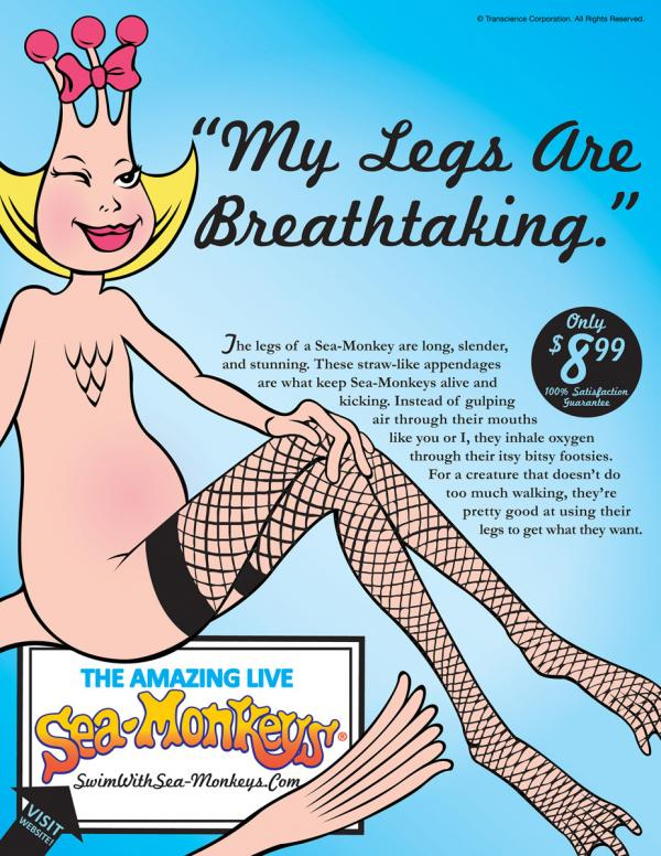 sea-monkeys-legs-small-56513